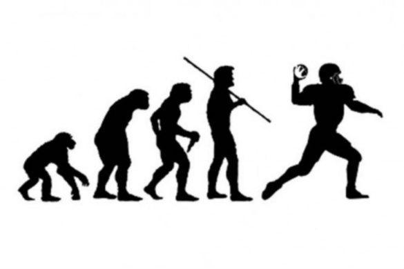 evolution-pic-e1344609364519